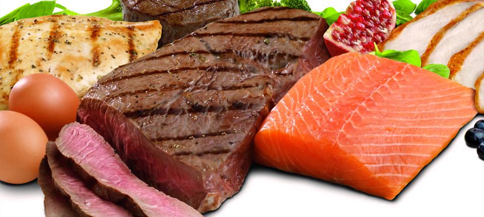Abecedarul proteinelor – funcționalitate și surse de obținere a acestora proteinelor