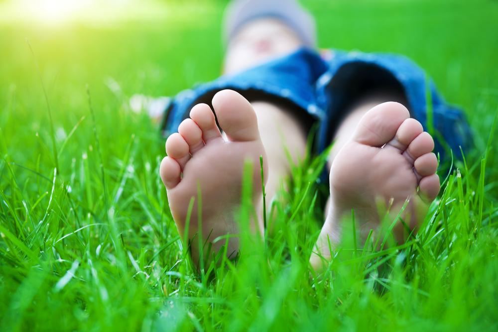 Pericolul din iarbă: căpușele